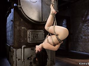 frogtied asian in cable suspension upside down